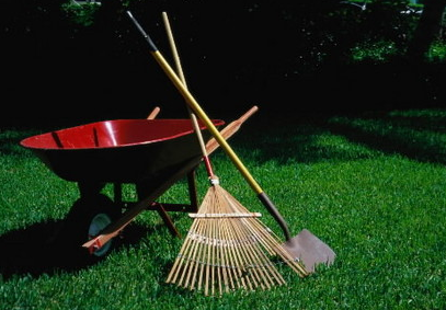 Ways To Get Your Yard Looking Great In Time For Spring